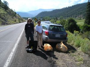 Previous highway cleanups